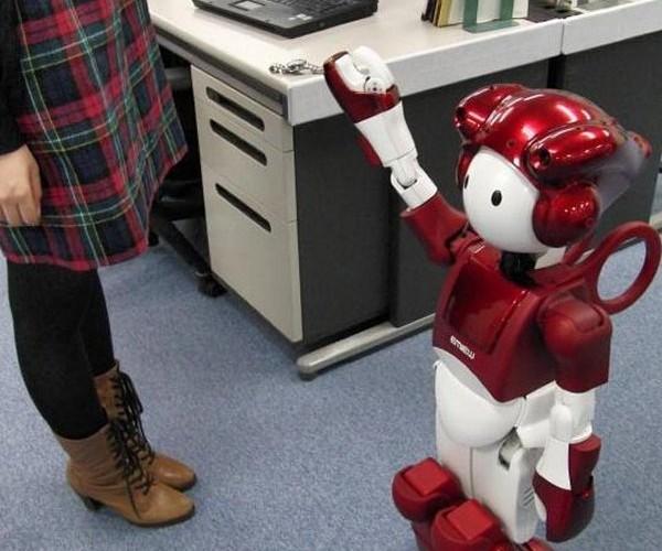 Hitachi's Emiew 2 Robot Gets an Upgrade
