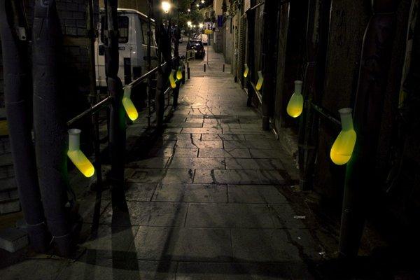 Illuminated Micro Toilets