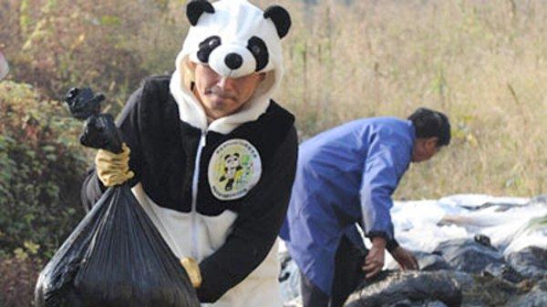 Panda Poop Tea