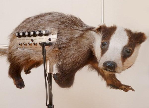badgermin 2