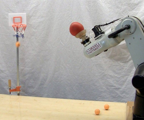 Robot Shoots Hoops, Nothing but (Sky)net