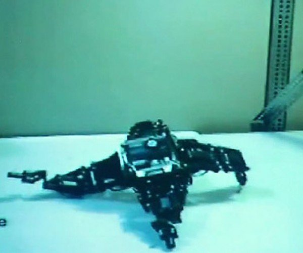 Robot Teaches Itself to Walk, Just Not Very Well