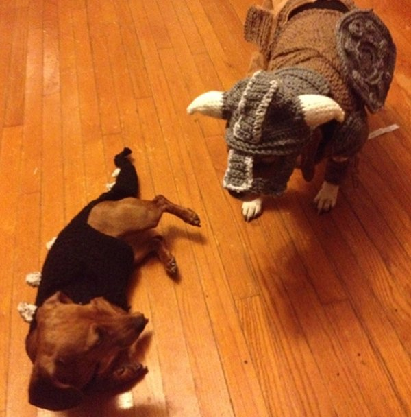 skyrim dog costumes by alicia scantlin 4