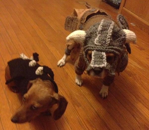 skyrim dog costumes by alicia scantlin