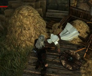 The Witcher 2 Easter Egg: Assassins of Assassin's Creed