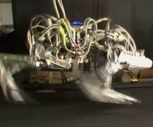 Darpa Cheetah Robot Sets Speed Record, Time to Run, Time to Hide