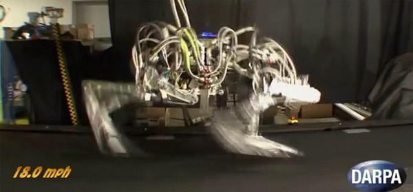 cheetah_darpa_fastest_running_robot