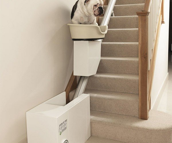 Stair Lift for Fat Lazy Dogs – Why Not Just Carry Them?