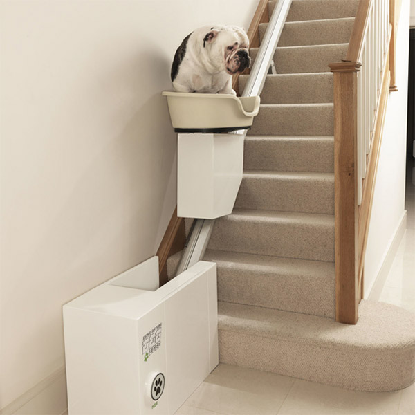 pet_lift_fat_dog_1
