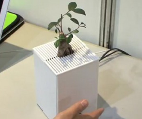 Japanese Scientists Create Interactive Plants That Can Wave at You