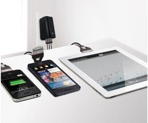 iLuv DualJack Cable Works with Both iOS and Micro-USB Devices