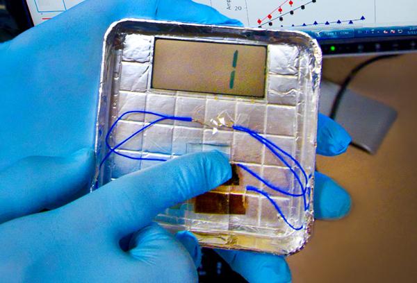 m13 bacteriophage berkeley labs