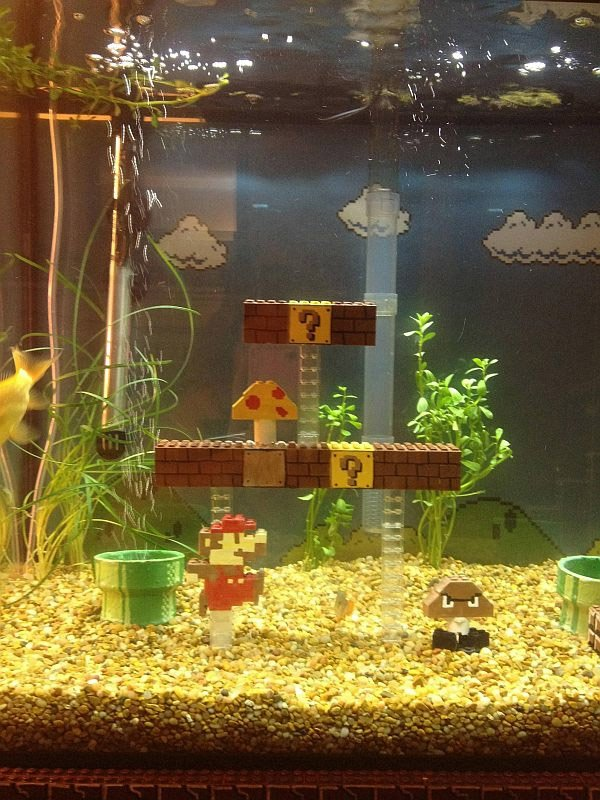 guy creates super mario bros scene inside fish tank not