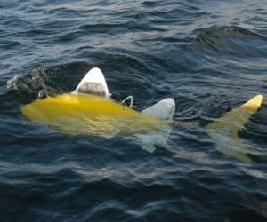 Robotic Fish Patrols Harbors for Pollution