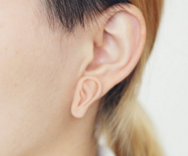 An Ear Within an Ear: Earception