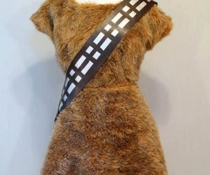Ewok Dress: May the Furs Be with You