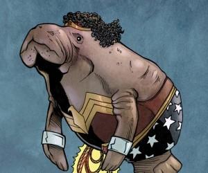 Wonder Woman 300x250