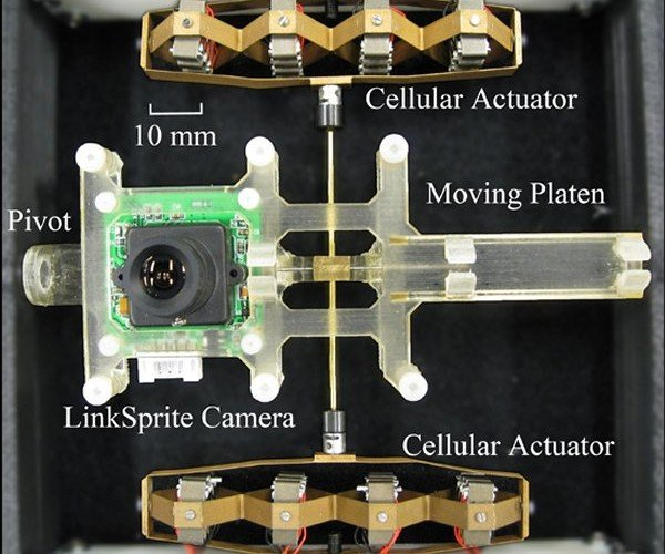 Robotic Camera Mimics Eye Movement