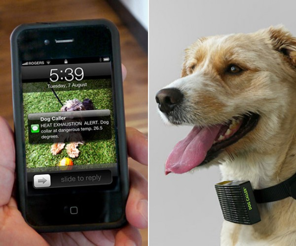 Dog Caller: Your Dog Can Now Text You