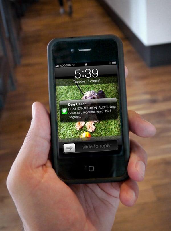 rethink toronto dog caller heat sensing collar text message