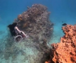 Artist Explores the Sea Without Leaving Her Wheelchair