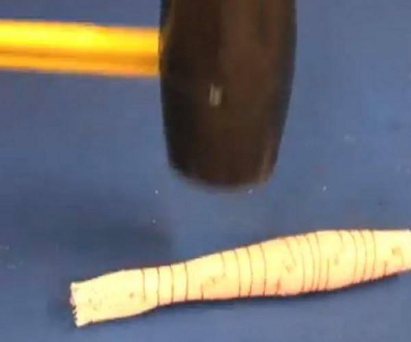 "Researchers Create ""Meshworm"" Robot that Can't Be Killed"