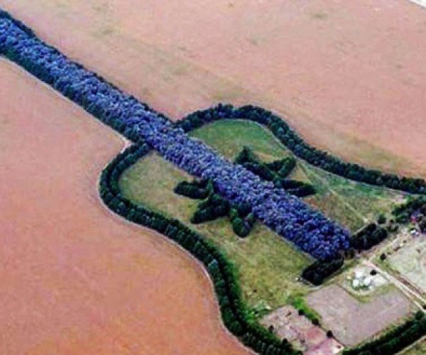 Guitar-Shaped Forest is a Man's Tribute to His Departed Wife