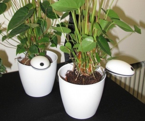Wi-Fi Sensor Tells You When Your Plant Needs Some H2O