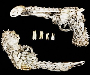 Guns Made from Animal Bones: Shoot to (Road)kill