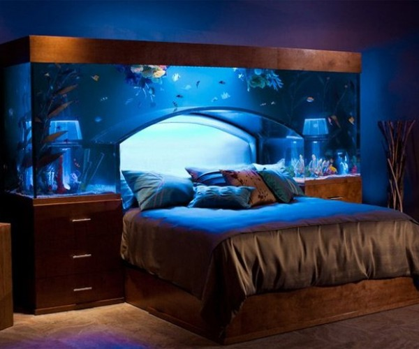 Aquarium Bed Lets you Sleep with the Fishes Every Night