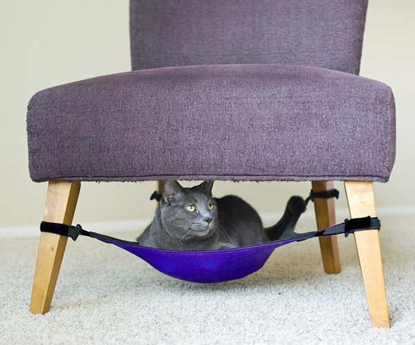 Cat Hammock is Purrfect for Lazy, Fat Cats