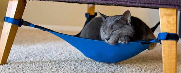 cat_crib_1
