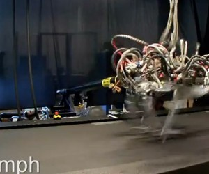 Cheetah Robot Can Outrun Usain Bolt