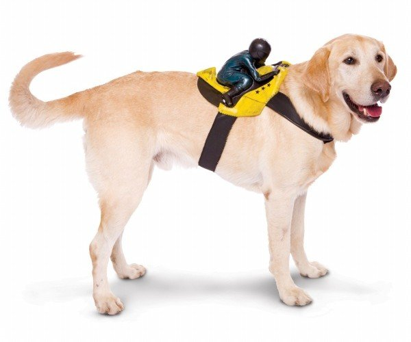 Your Dog's Halloween Nightmare: Dog Rider Pet Costumes