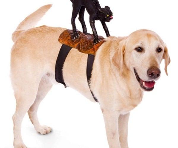 Dog Rider1
