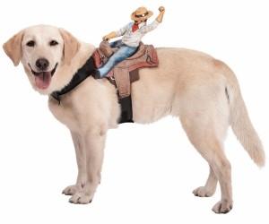Dog Rider2