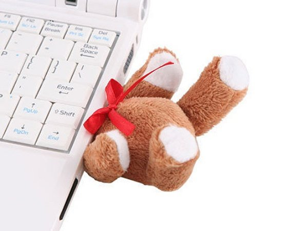Headless Teddy Bear USB Drive