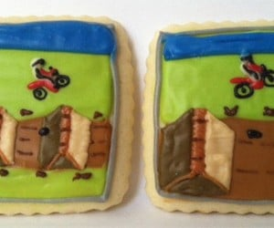 excitebike cookies 300x250