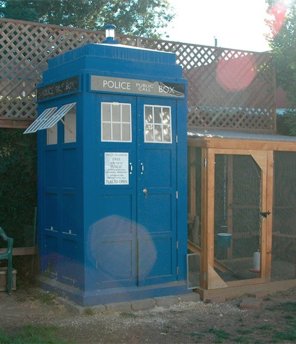tardis chicken coop 1