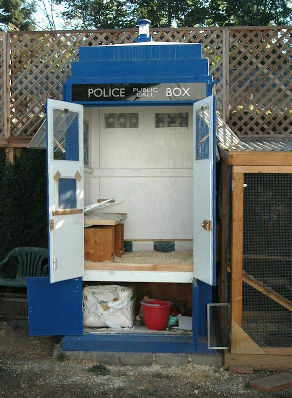 tardis chicken coop 4