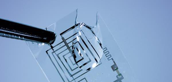 transient electronics by tufts school of engineering and university of illinois