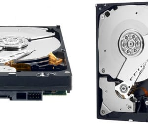 Western Digital 4TB Hard Drive Gives You More Storage Than You Ever Thought You Needed