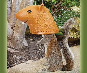 Big Head Squirrel Feeder Lets You Point and Laugh at Nature