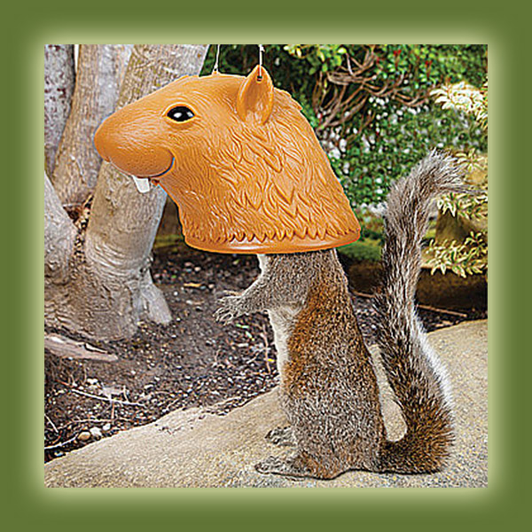 big_head_squirrel_feeder