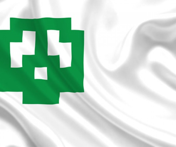 Fly the Flag from Super Mario Bros.!
