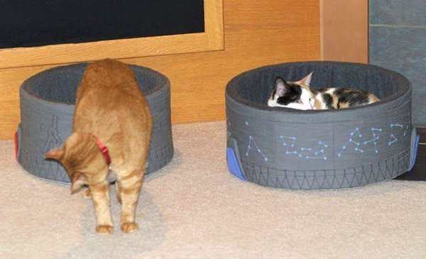 stargate cat beds 2