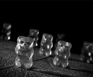 Zombie Gummy Bears: Eat Their Brains Before They Eat Yours