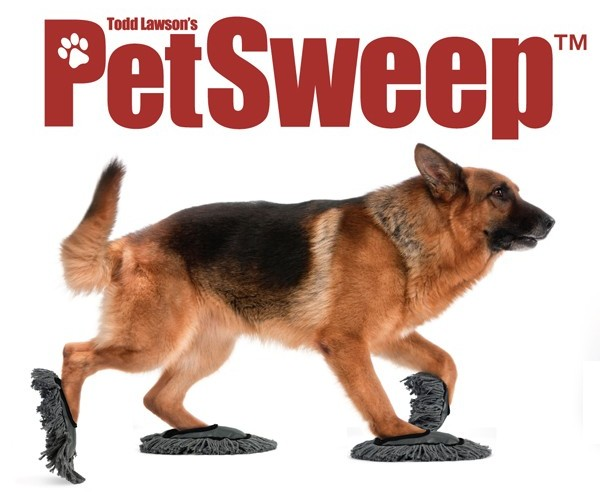 Pet Sweep Puts Man's Best Friend to Work