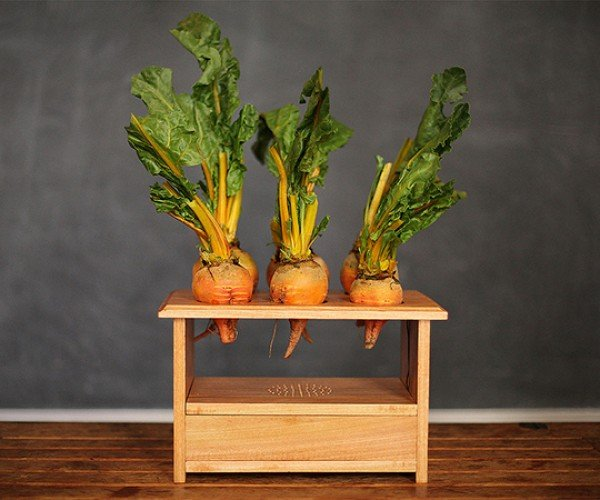 BeetBox Drum Machine: Beets That Make Beats