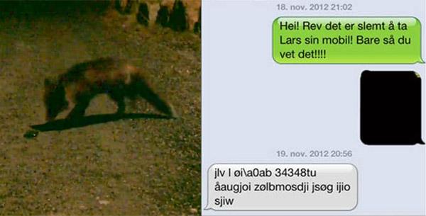 fox_text_messages